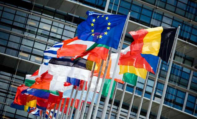 El Informe del Parlamento Europeo sobre el futuro del  sector de la horticultura recomienda un marco legislativo y político  propicio